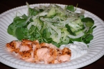 Hot-Smoked Salmon with Fennel Salad and Lemon Mayo