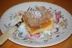 Apricot Crumb Squares